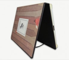 The Woods DODOcase for iPad2